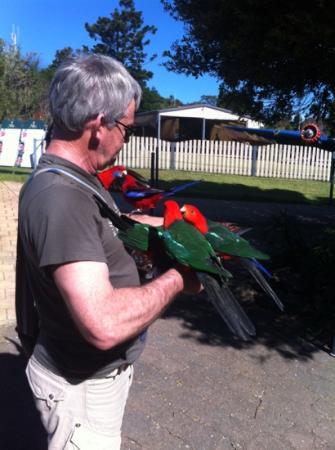 Southern Cross 4WD Tours: feeding wild birds