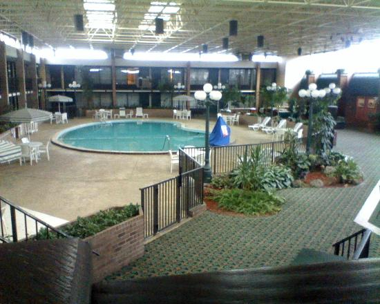 Quality Inn Conference Center: Inside Pool/Atrium area