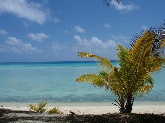 Tikehau Ninamu Resort: Eden island