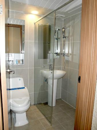 Hotel Jhill: Toilet & sink in shower stall
