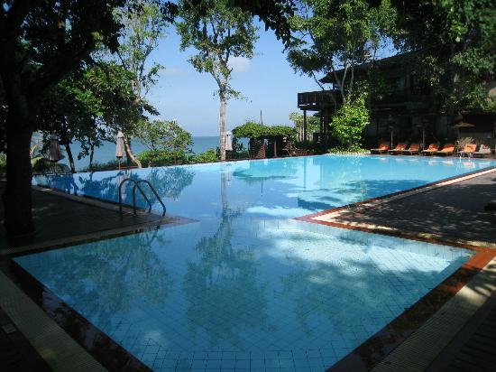 Birds & Bees Resort: the glorious swimming pool overlooking the sea