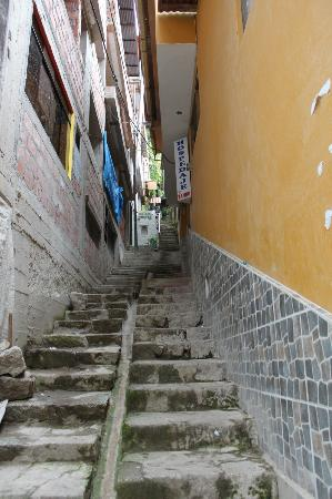Rupa Wasi  Lodge: Stairs to lodge