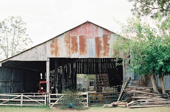 Clandulla Cottages, Beaudesert: the barn
