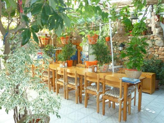 Ferah Pension: Reception/breakfast room