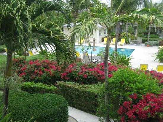 Island Club: Manicured gardens and lovely pool, very well maintained