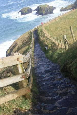 Carrick-A-Rede Rope Bridge: Going down