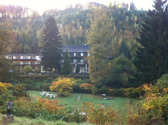 Waldhotel Forellenhof: Вид на отель