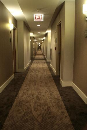 The Westin Chicago North Shore: Hallway/Corridor