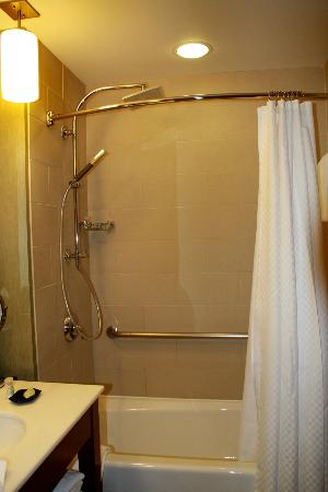 The Westin Chicago North Shore : New shower heads! (rain & stick)