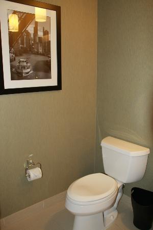 The Westin Chicago North Shore : Bathroom