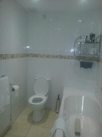 The Devonshire Park Hotel Eastbourne : Bathroom from the shower
