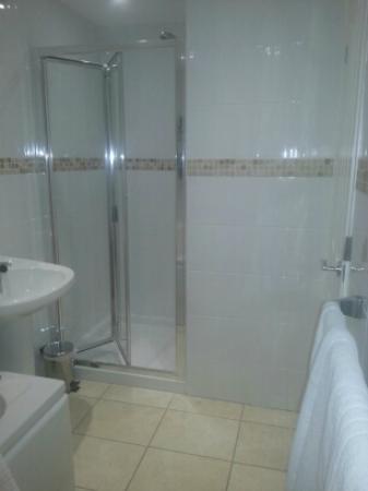 The Devonshire Park Hotel Eastbourne: Bathroom from the WC pedestal