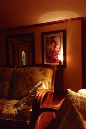 Coconut Cottage Bed & Breakfast: ムード溢れる夜のリビング