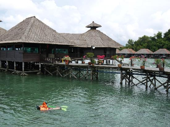 Gayana Eco Resort: snorkeling