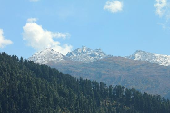 Rock Manali Hotel & Spa: Another view from Room