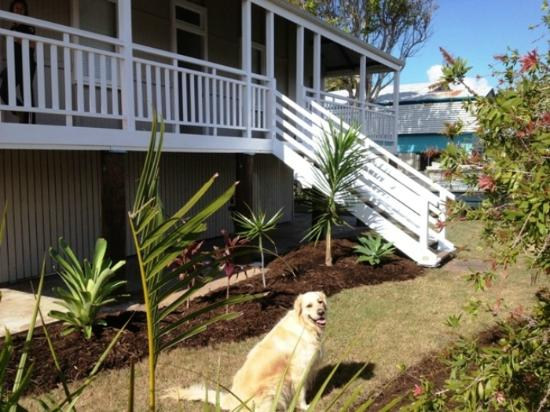 Boomerang Beach House: pet friendly