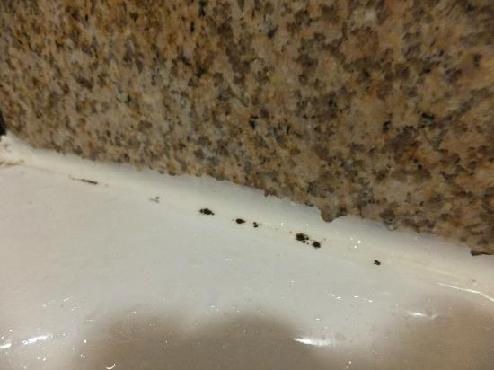Days Inn Blacksburg Conference Center: Mold around tub