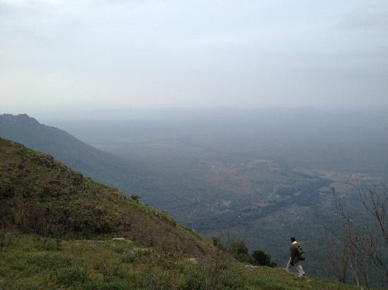 Mount 'n' Mist: mount n mist