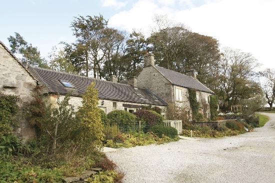 Wheeldon Trees Farm Holiday Cottages: Courtyard