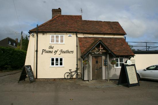 Plume of Feathers, Tewin, Welwyn AL6 0LX England