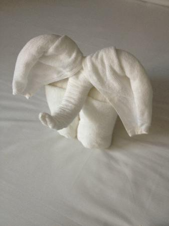 i-Kroon Cafe & Hotel: Fancy towel