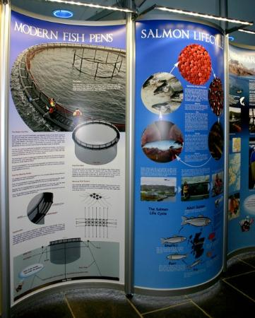 Tobermory Marine Exhibition : Salmon farming