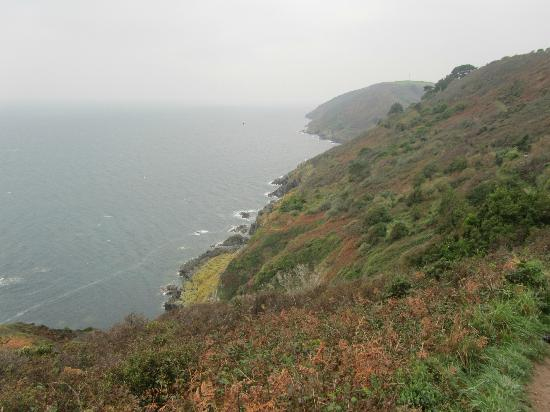 Killigarth Manor Holiday Park: View from coastal walk to Polperro
