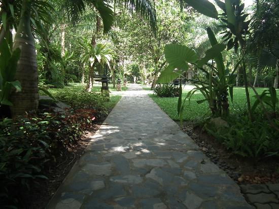 Krabi La Playa Resort : Garden area