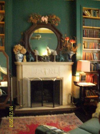 Ehrhardt Hall Bed and Breakfast Inn: Drayton Library/In-room fireplace