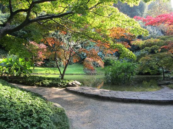 I giardini di villa mezzi foto di i giardini di villa for Giardini foto ville