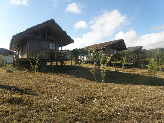 Nature Lodge: Bungalow