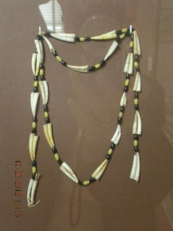 Tillamook County Pioneer Museum : Dentallia Necklace