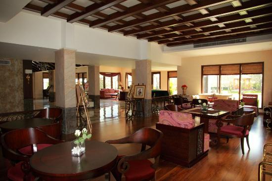 Rock Manali Hotel & Spa: Hotel Lobby