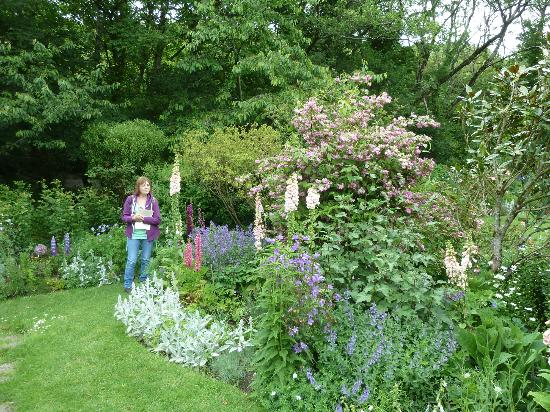 Docton Mill Gardens & Tea Rooms: part of the herbacious borders