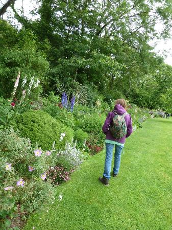 Docton Mill Gardens & Tea Rooms: Prt of the Herbacious Borders