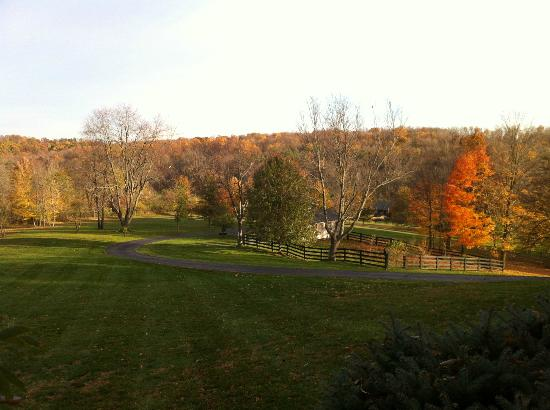 The Welsh Hills Inn: My favorite picture from the porch. Fall is a gorgeous time of year to be here.