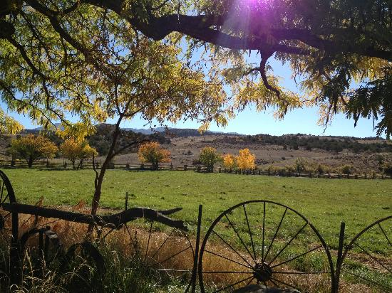 Canyon of the Ancients Guest Ranch: Pasture view at ranch