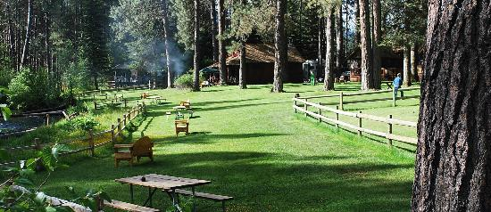 Cold Springs Resort and RV Park 사진