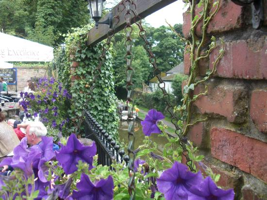 Ring o Bells: The garden overlooking the canal