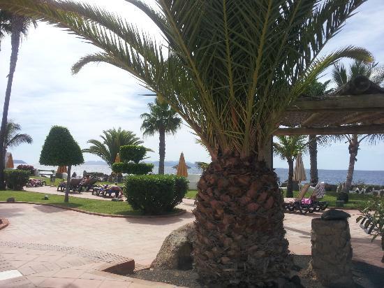 H10 Timanfaya Palace: zona de piscina con vista al mar