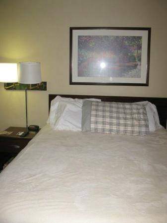 Extended Stay America - Long Island - Bethpage: Bed