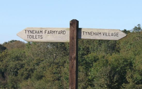 Tyneham: You are here