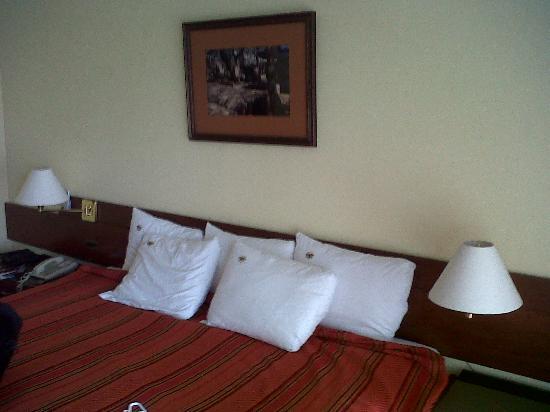 Casa Andina Select Chiclayo: Almohadas