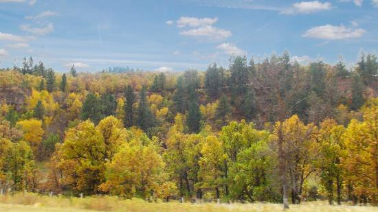 Spearfish Canyon: Colours as you enter the canyon