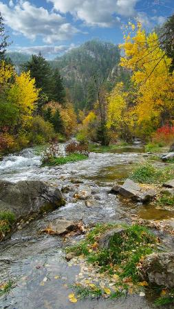 Another pretty river in Spearfish Canyon