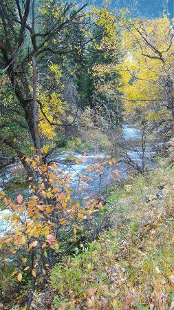River in Spearfish Canyon