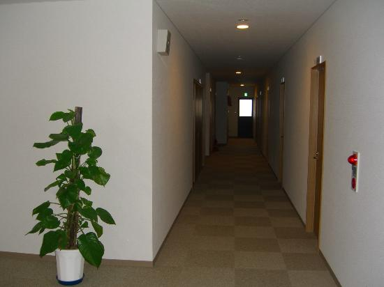 Yakushima Youth Hostel: 廊下
