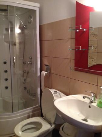 Pensiunea Brici: modern bathroom