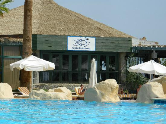 Hilton Sharm Waterfalls Resort: bar pool
