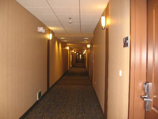 Hampton Inn & Suites Madera: Hallway View